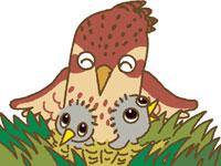 日本野鳥の会 ひばりは どこに