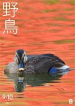 日本野鳥の会 会報 『野鳥』